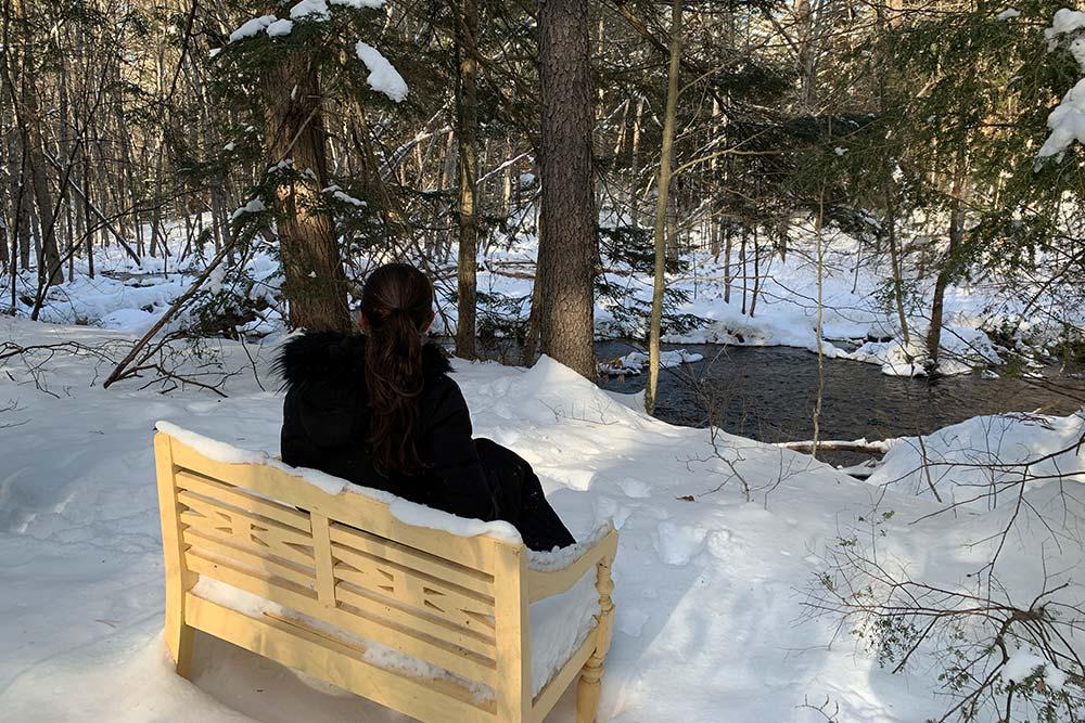 Women on bench overlooking stream