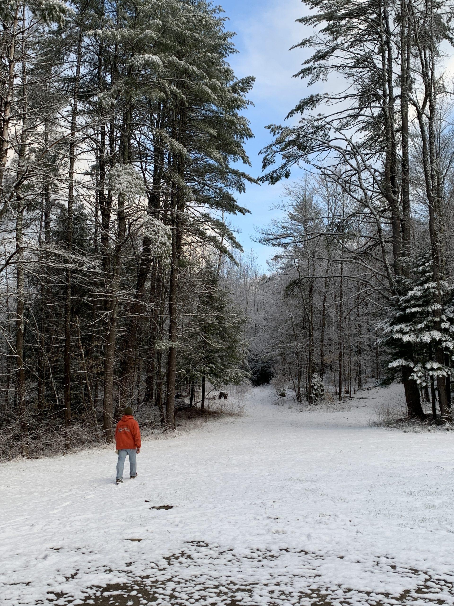 Walking Snowy Trail